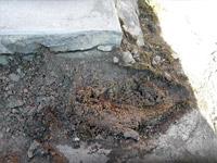 Обследование кровли / Биологическое поражение, замачивание цементной стяжки плиточного покрытия